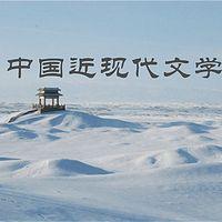 中国近现代文学