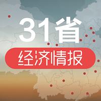 31省经济情报