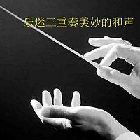 林声说音乐----乐迷三重奏美妙的和声