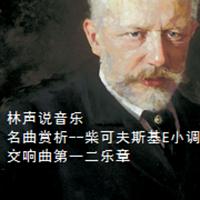 林声说音乐--名曲赏析--柴可夫斯基E小调第五交响曲第一二乐章