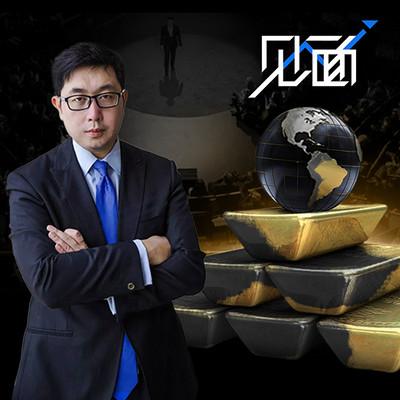 见面   新兴市场投资主题专场「金砖四国到钻石策略」