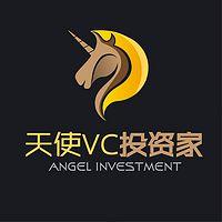 天使VC投资家之大咖面对面