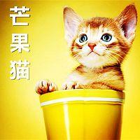 【晓月讲儿童经典】芒果猫