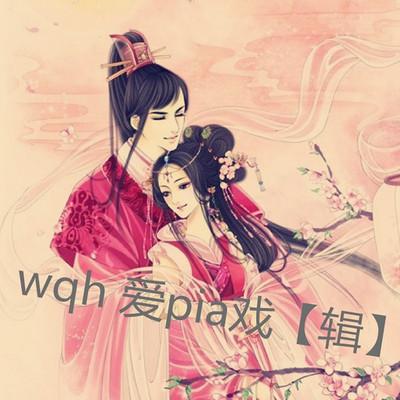 wqh 爱pia戏【辑】
