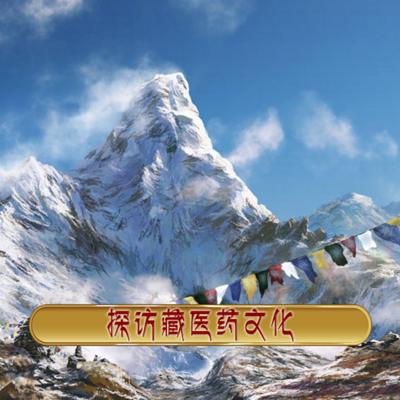 探访藏医药文化