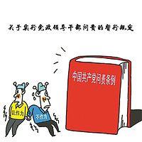 关于实行党政领导干部问责的暂行规定