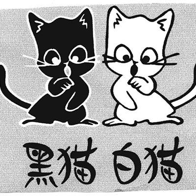 黑猫的朋友是白猫