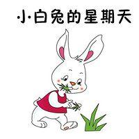 小白兔的星期天