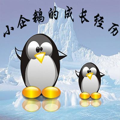 小企鹅的成长经历