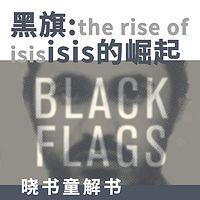晓书童解书 黑旗: ISIS的崛起