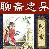 王传林评书:聊斋志异之阿宝