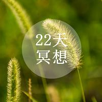 22天冥想