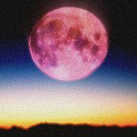 Pink Moon on