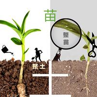 家庭教育,孩子教育,父母成长的必修课