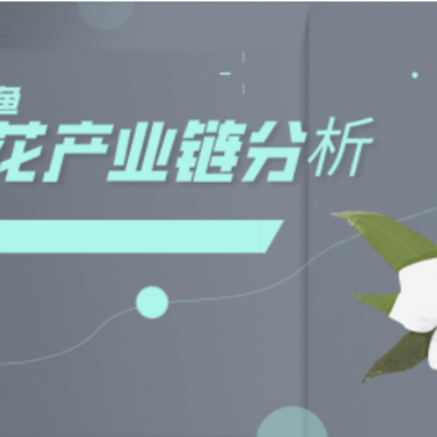 期货棉花产业链基础分析