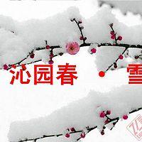 《沁园春·雪》