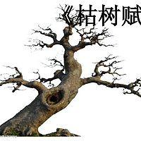 《枯树赋》庾信