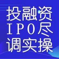 巨树 投融资IPO尽职调查实操及案例剖析