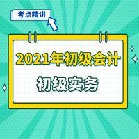 2021年初级会计职称 初级会计实务
