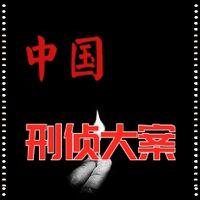 中国刑侦大案