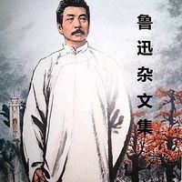 鲁迅杂文集