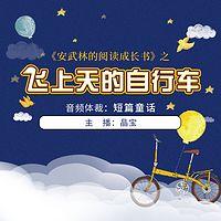 《安武林的阅读成长书》之《飞上天的自行车》