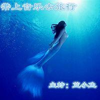 蓝小鱼的音乐旅行
