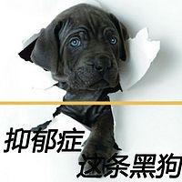 抑郁症这条黑狗