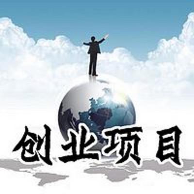 马云创业 创业项目