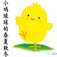 小鸡球球的故事:小鸡球球的春夏秋冬