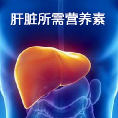 肝脏健康相关的营养素
