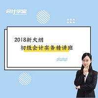 2018初级会计职称-会计实务