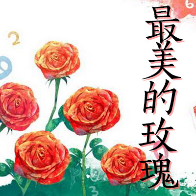 最美的玫瑰