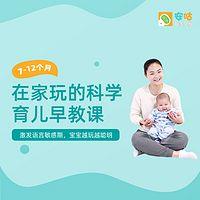 在家玩的科学育儿课  (7-12个月)