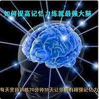 如何提高记忆力、快速阅读、全脑开发