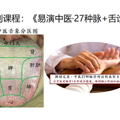《易演伤寒论》中医脉诊+舌诊公开课