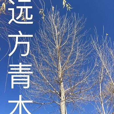 远方青木语音版