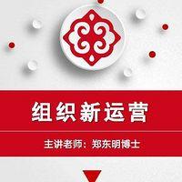 郑东明|企业组织结构股权系统